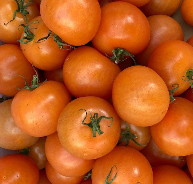 Tomatoes Alicante